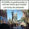 el GCBA: no podrá podar ni extraer hasta que cumpla con la ley de arbolado.⠀
