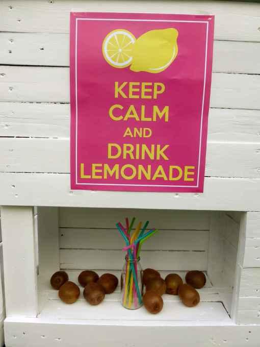 Palettery - Lemonade Bar 8