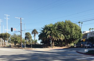 DWP poles in front of the former Bernheimer Garden need a Coastal permit.