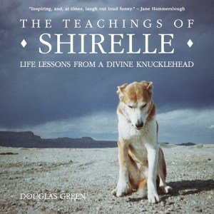 21-teachings of shirelle cover