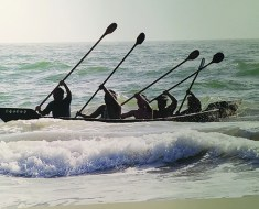 The Tongva built canoes to travel from island to mainland and for fishing and hunting sea mammals.