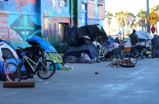 Homelessness Increases in District 11