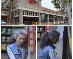 Security footage of a suspect who is charged with yelling racial slurs towards at least two individuals in the parking lot of Ralphs in Pacific Palisades. Photos: LAPD/Google.