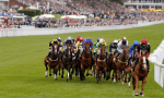 Eat, Drink and Celebrate during the races – 31st July – 4th August