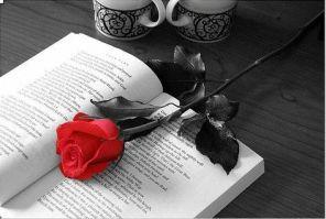 libro-y-flor