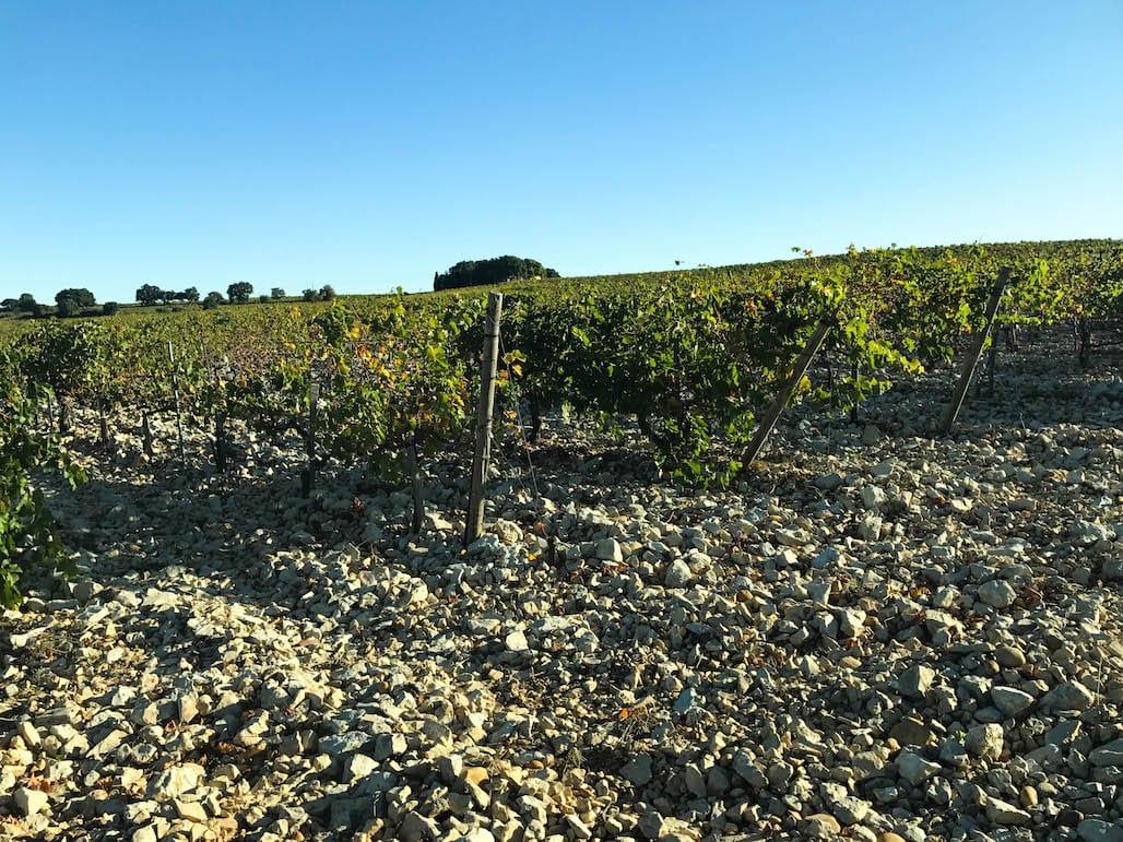 River rock soil of the Southern Rhône Valley