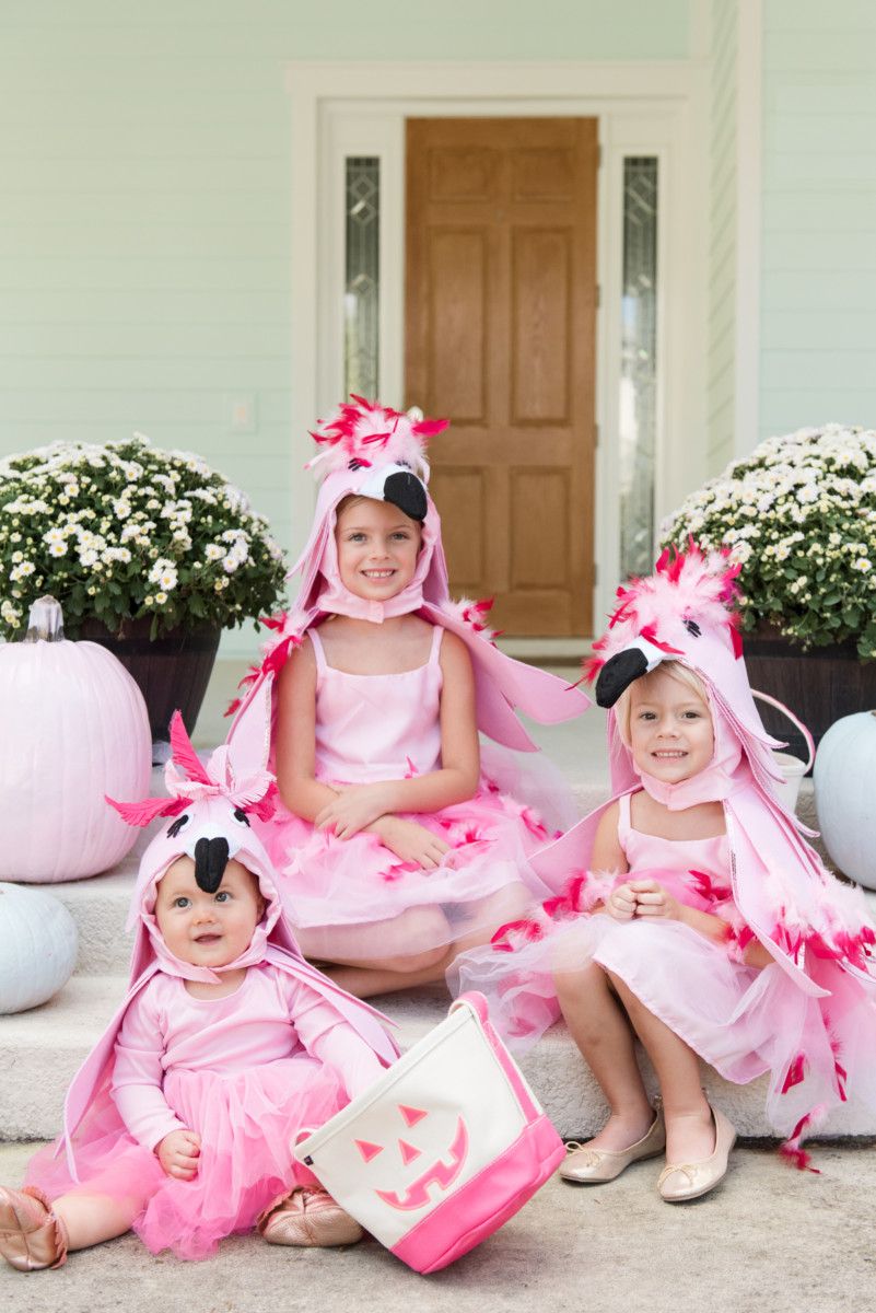The Three Flamingos  Palm Beach Lately