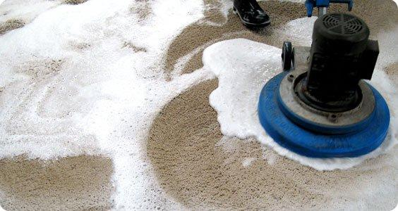 Ft Lauderdale Carpet Cleaning  Commercial  Professional