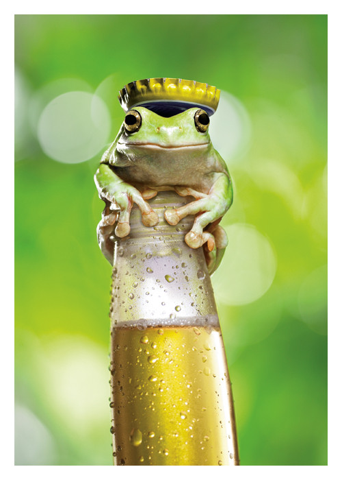 Beer Frog Tag Palm Press