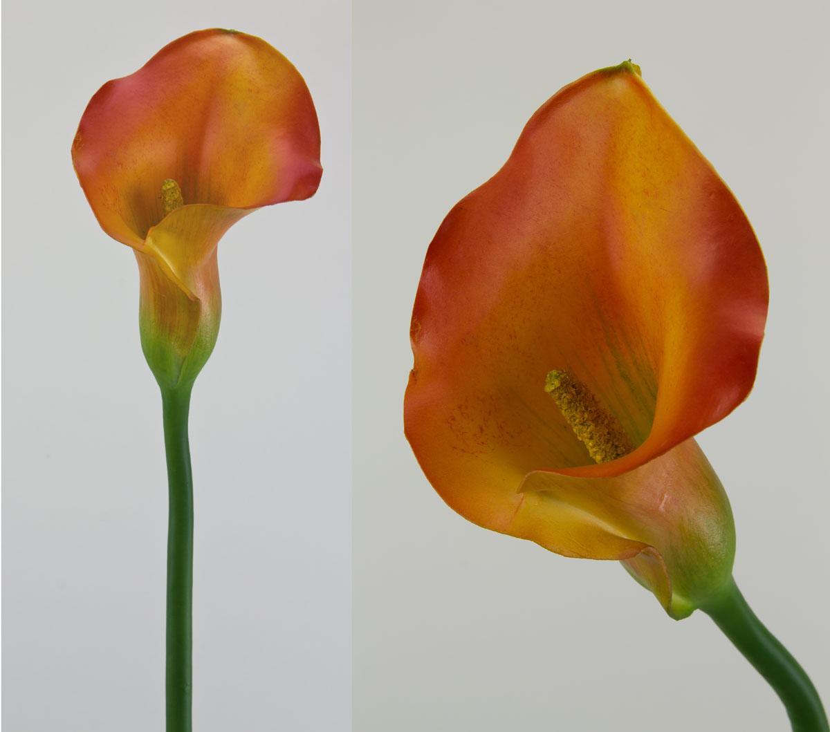 Calla Deluxe gro 82cm orangelachs AR knstliche Blumen Kunstblumen  eBay