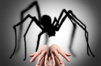 fobia-lęk-panika-pajak