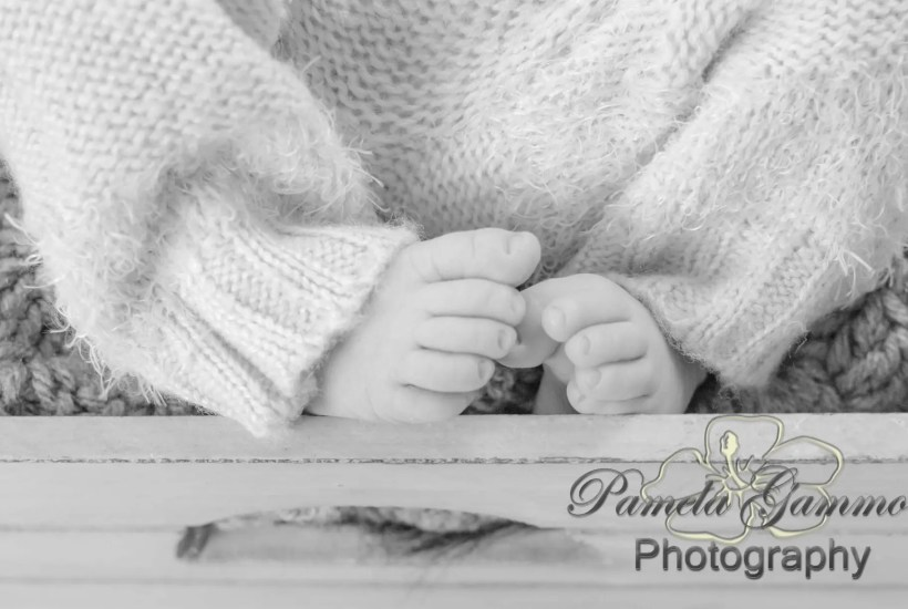 Waverly Ohio Newborn Photographer