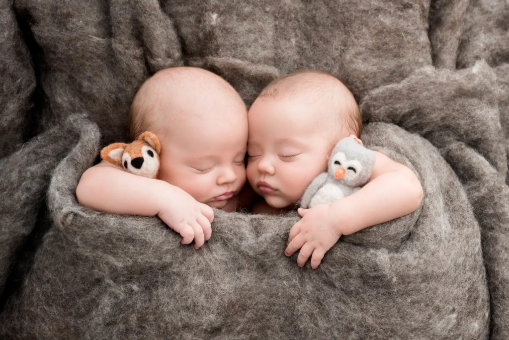 Ashland KY Newborn Twin Photos