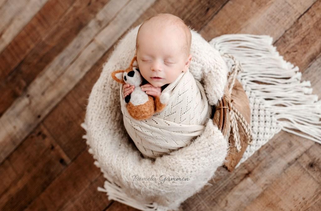 Newborn Boy Photographer Ohio