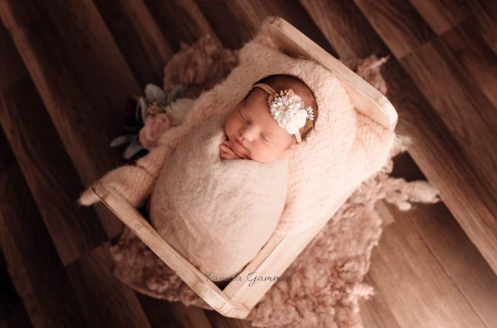 Newborn Photography Studio Session Southern Ohio