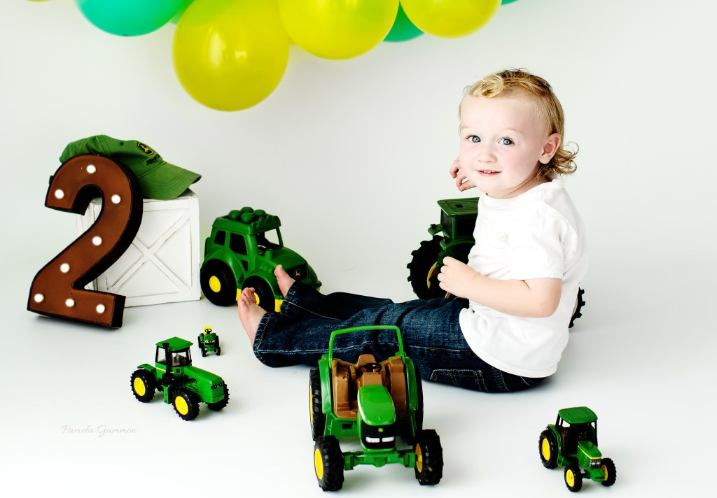 Two Year Old Boy Milestone Pictures