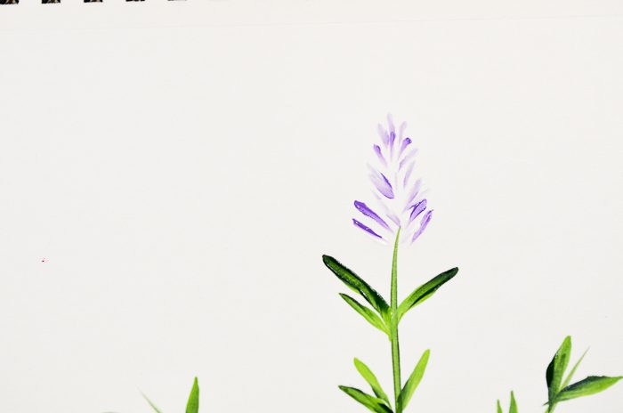How to Paint Lavender buds on top of stem