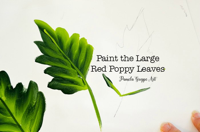 Paint the Large Red Poppy Leaves