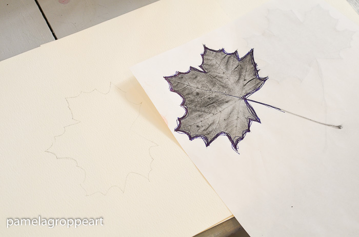 Outline of maple leaf to paint