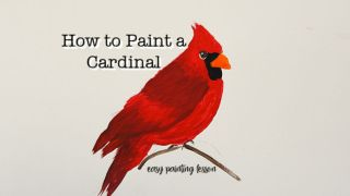 Paint a Cardinal in Acrylics