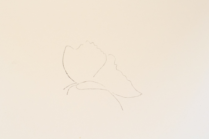 Outline of butterfly to be painted
