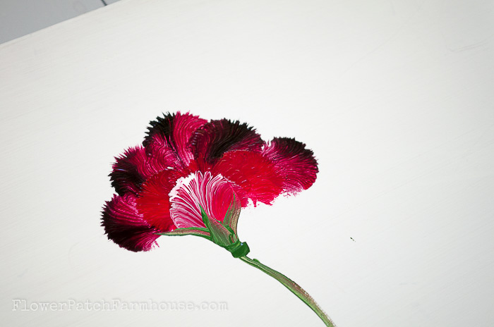 hand painted carnation using a round brush, pamelagroppe.com