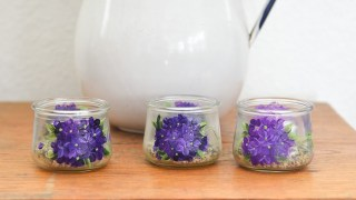 easy Paint Violet Flowers on Glass