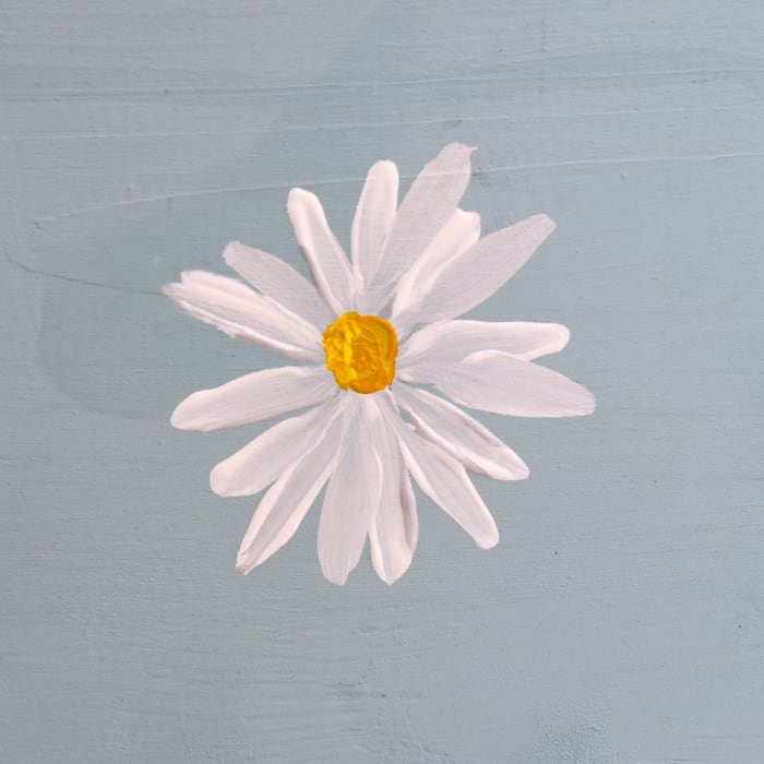 painting of a simple daisy