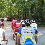 Road Cycling Peloton