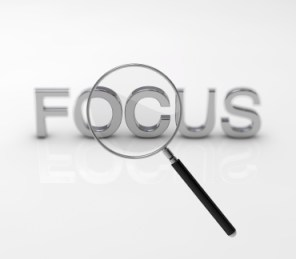 focus on social business results