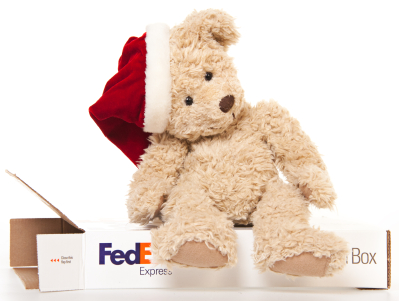 fedex customer service holiday case study