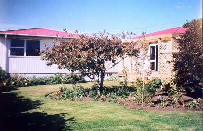 The plum tree and house behind