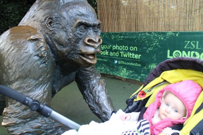 And evidence of our very short trip to the London Zoo. Sophie was having an off day and cried the whole time.... so we left!
