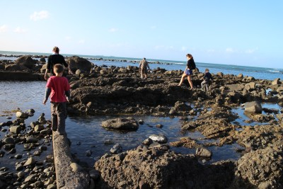 These are the rock pools at Kawaroa. The kids love to look to see if they can find crabs or starfish.