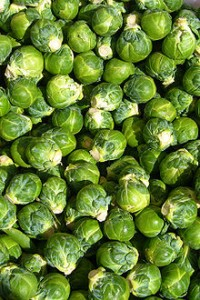 220px-Brussels_sprout_closeup