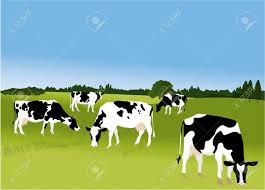 Grazing farm animals