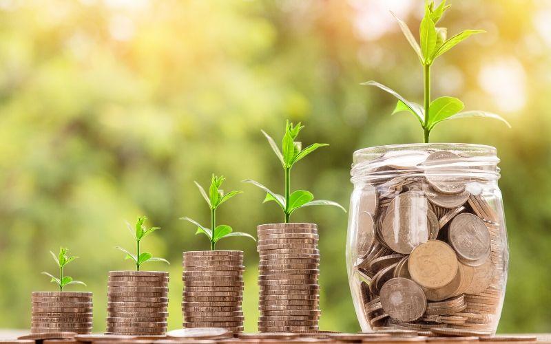 Ahorrar al comprar pañales ecológicos Pingo
