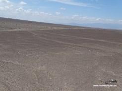 Peru2_04062