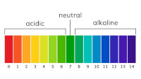 Understanding acidity & sourness 3