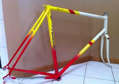 NOS '89 PICS Team Custom frame