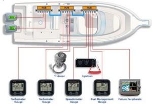Raymarine Seatalk Wiring  Wiring Diagram Pictures