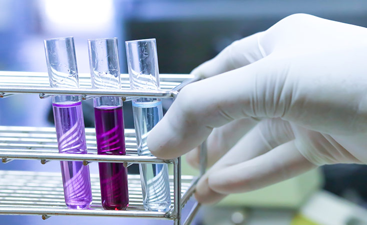 Pancreatic Cancer Action Network funds basic, translational and clinical research
