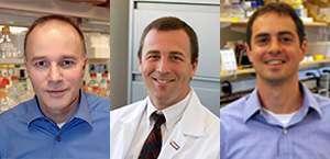 Peter Storz, MD, David Dawson, MD, PhD, and Nabeel Bardeesy, PhD
