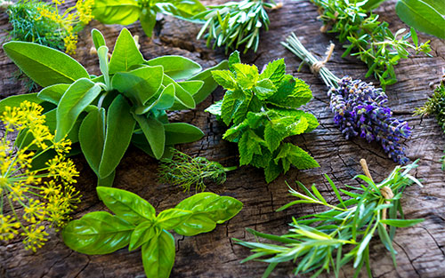Spice up Your Diet with More Herbs, Less Salt - Pancreatic Cancer ...