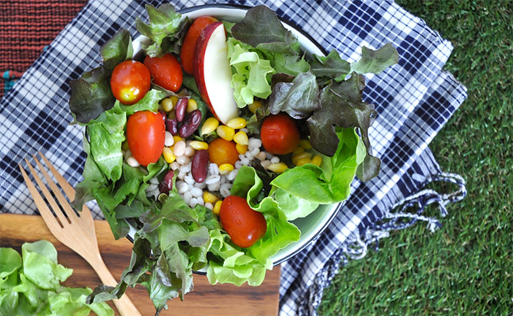 Friday Fix: Going Paleo, Healthy or Harmful? - Pancreatic