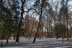 08-Zima-Gradski-park-u-Vrscu