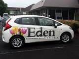PandaInspire - Vehicle Graphics (Eden side 1)