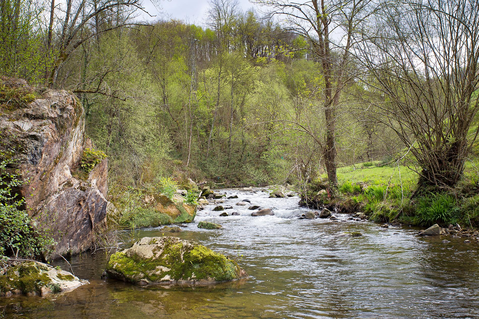 río güeña en pandesiertos