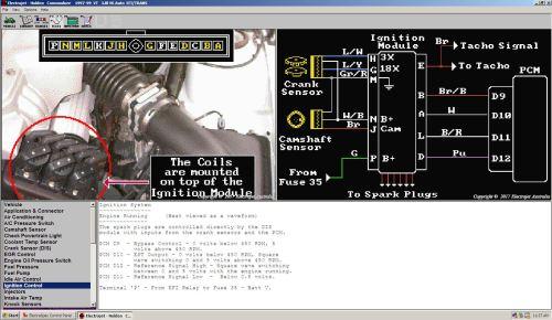 small resolution of vt commodore dfi module wiring diagram