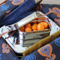 Ecolunchbox snackdoosje – kleine lunchbox – ecolunchbox lunchpod